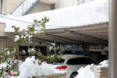 史上最高積雪